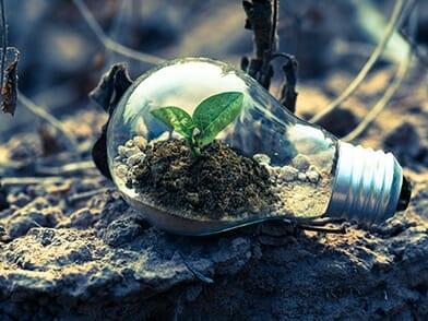 social network ambientali