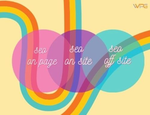 Seo On Page, guida completa all'ottimizzazione delle pagine